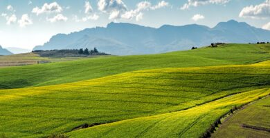 yeso agrícola